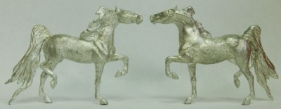 5021 American Saddlebred