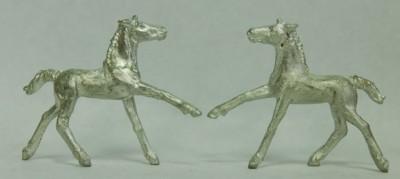5032 Friesian Foal